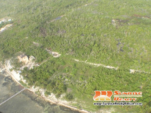 Habaneros 10 Lots - Price Reduced for Quick Sale, Offering